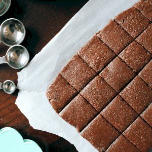 Healthy No-Bake Brownie Bites (Keto, Paleo, Vegan) PrettyPies