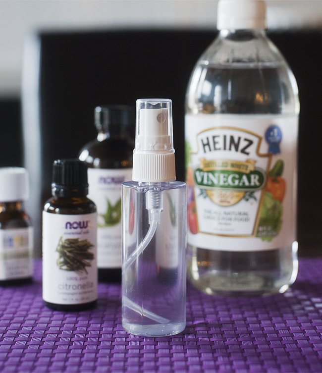Homemade Tick And Mosquito Repellent For Humans Homemade