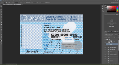 Ontario Canada driving licence psd template