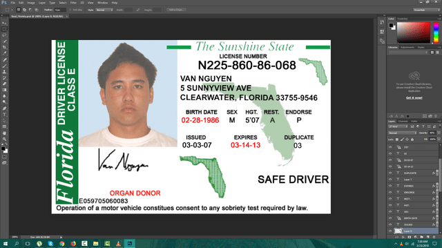Florida driving licence psd template