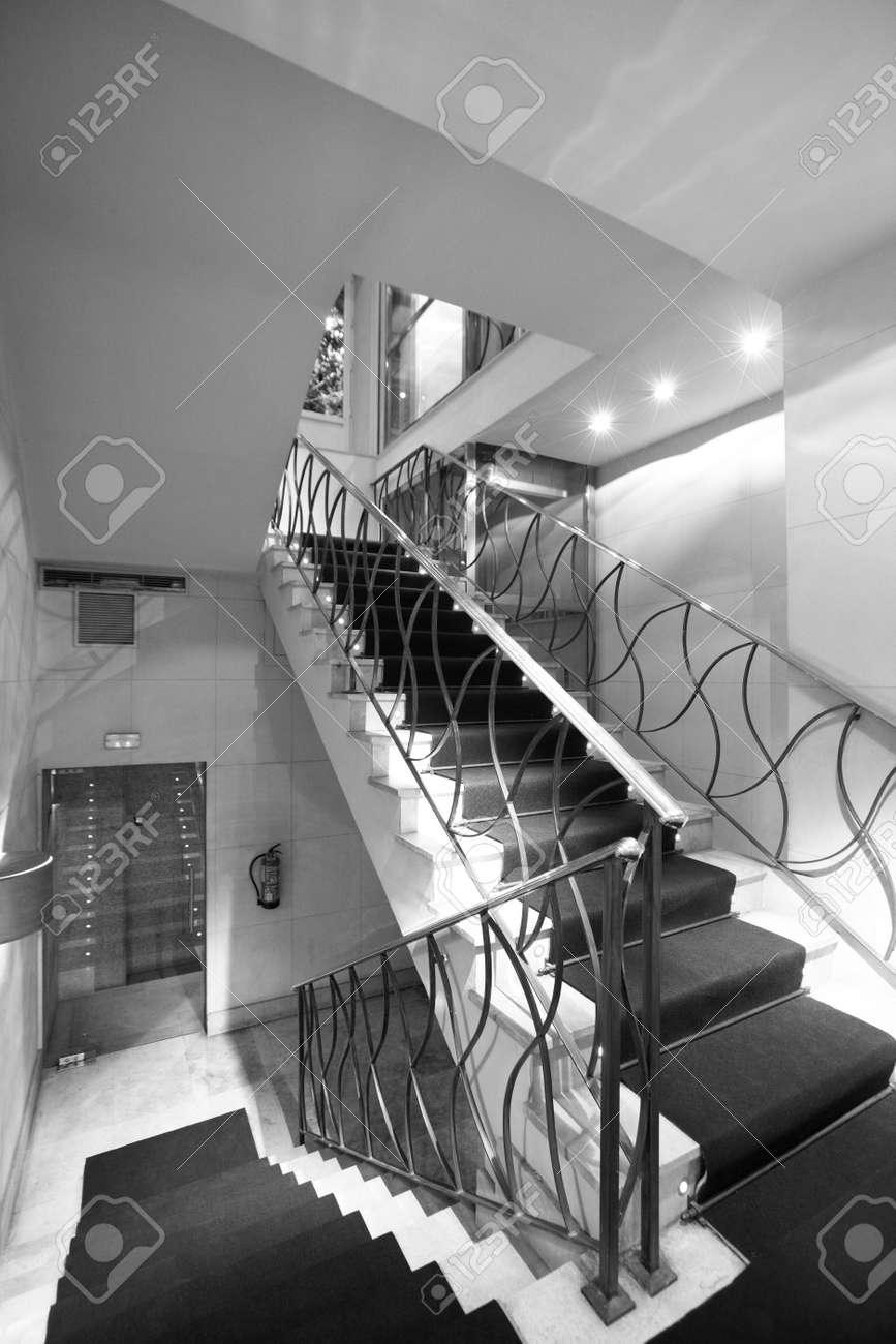 Hotel Staircase With Carpet Vertical Black And White Stock Photo   White Stairs With Carpet   Chocolate Brown   Oak   Solid Colour   Colour   Landing