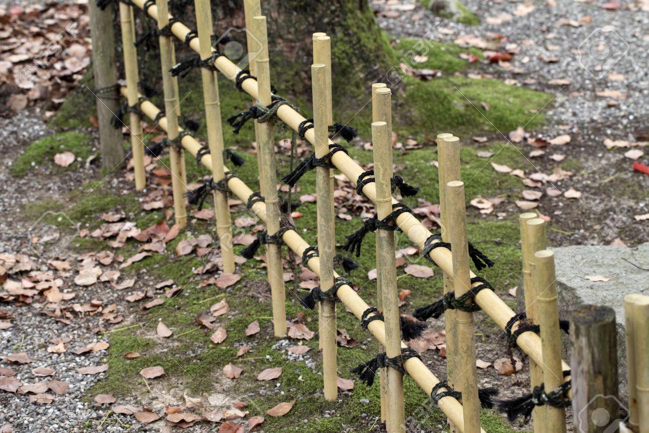 cloture de bambou dans un jardin japonais