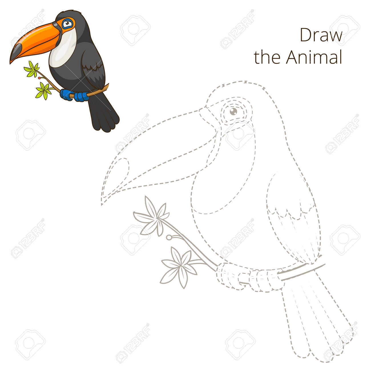 Draw The Animal Toucan Educational Game Colorful Cartoon Vector Royalty Free Cliparts Vectors And Stock Illustration Image 46931017