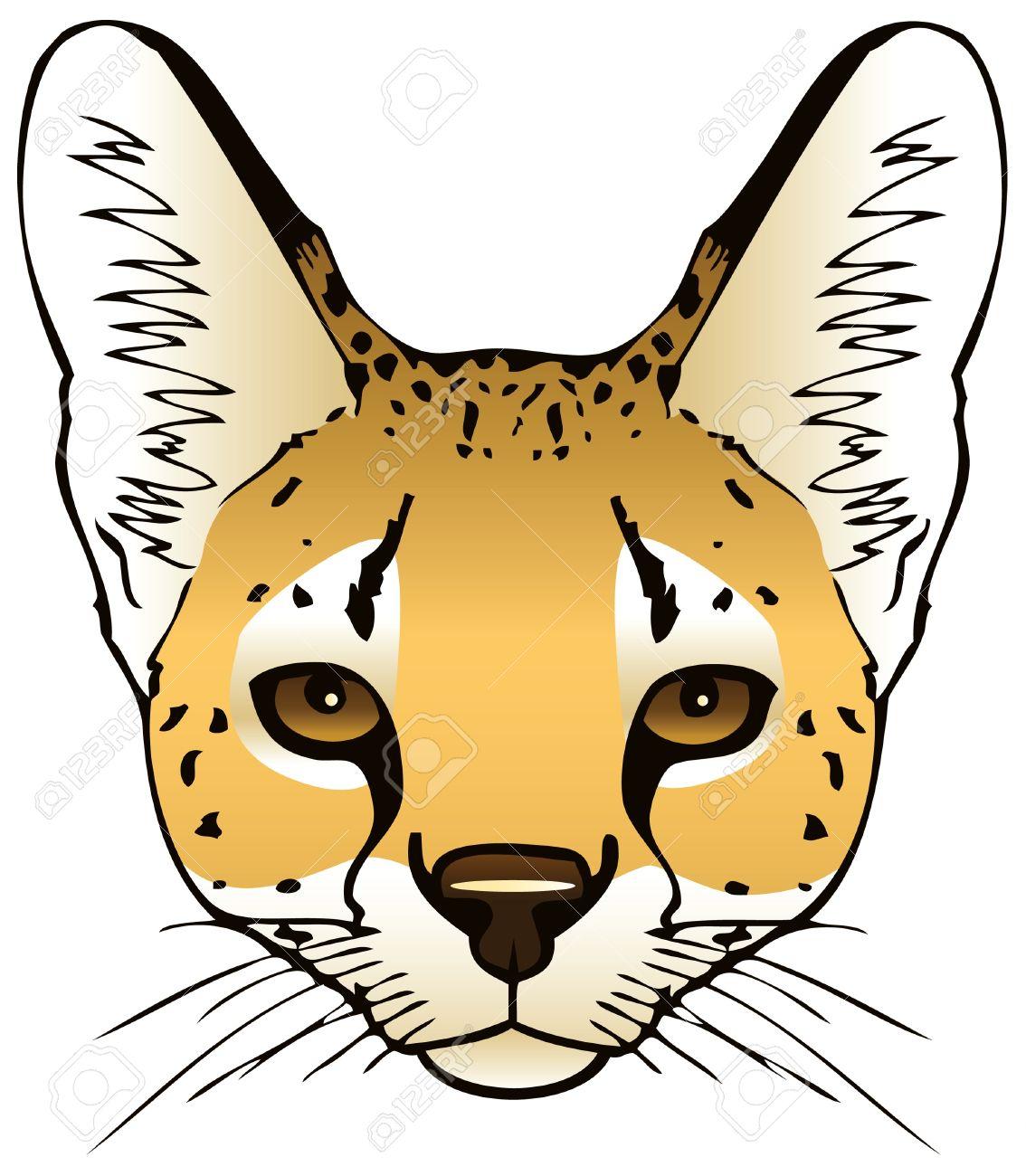 serval cat coloring page serval cat coloring page serval cat