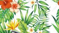 Permalink to Tropical Flower Wallpaper