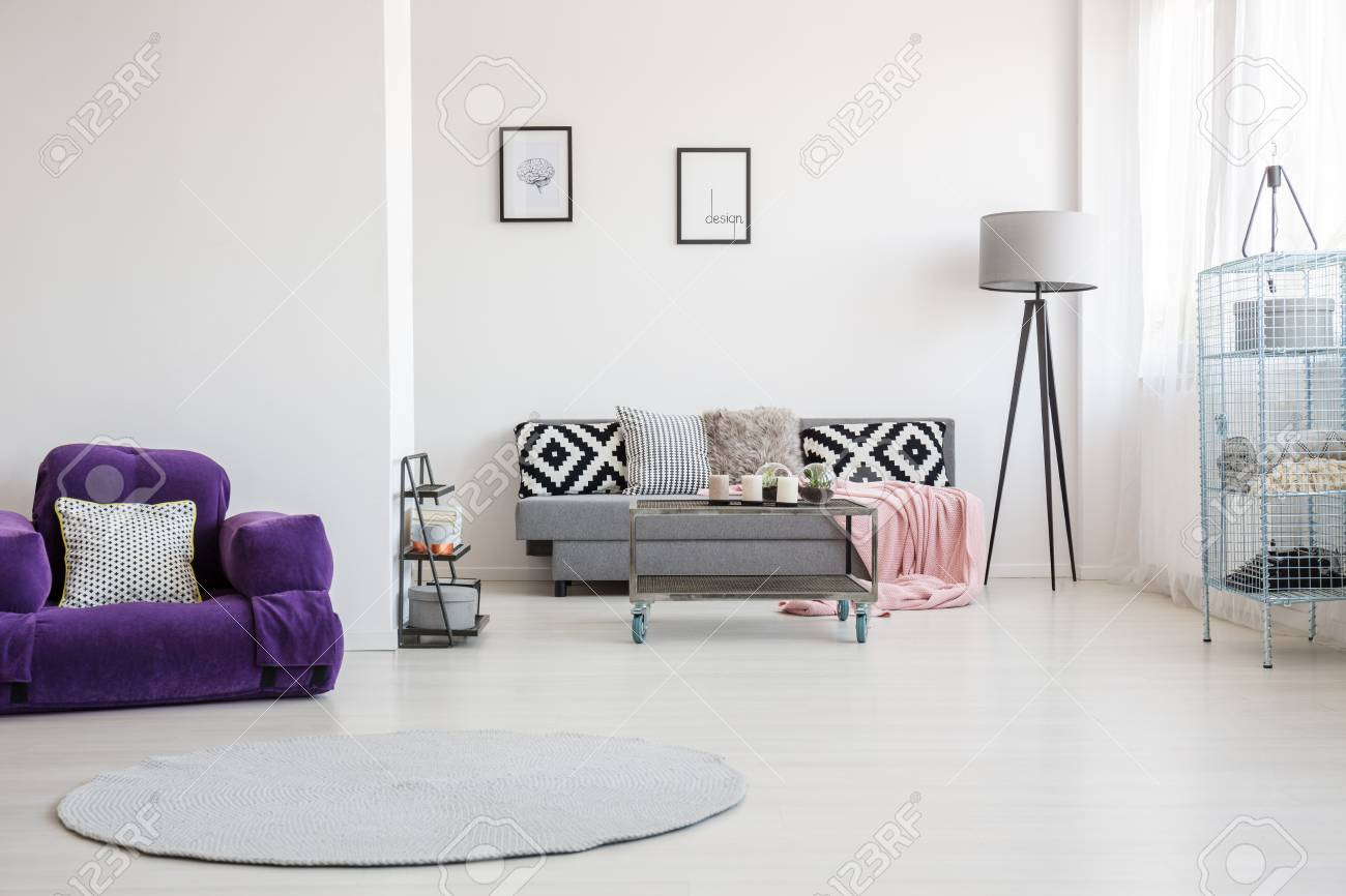 round rug and purple armchair with decorative pillow in spacious stock photo picture and royalty free image image 93199775