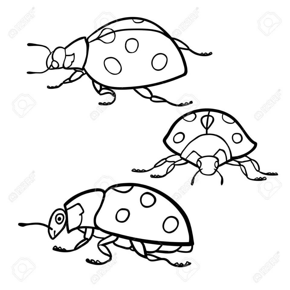 塗り絵: てんとう虫セットのイラスト素材・ベクタ - image 56046301.