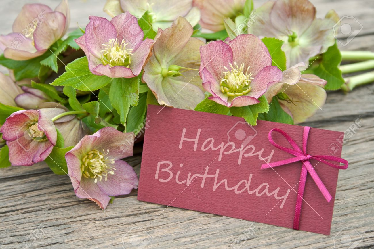 Pink Flowers With Birthday Card Stock Photo Picture And Royalty Free Image Image 19726082