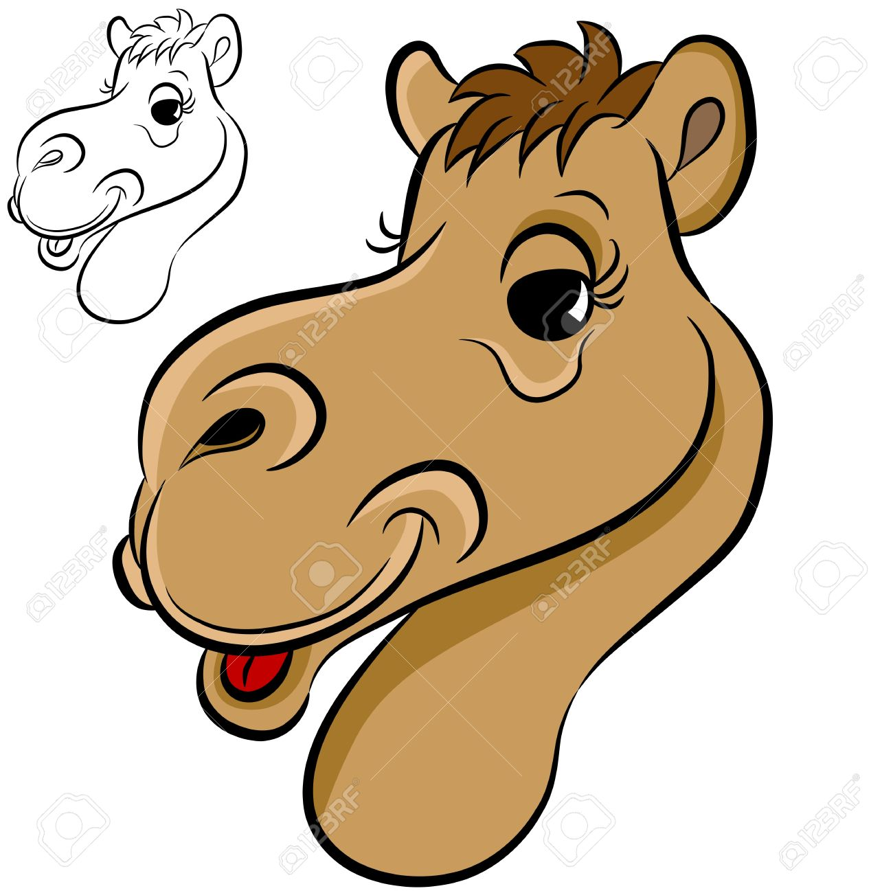 354 camel head stock vector illustration and royalty free camel