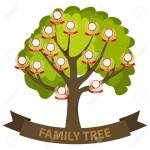 Genealogy Tree Family Tree With Family Members Flat Design Royalty Free Cliparts Vectors And Stock Illustration Image 100160345