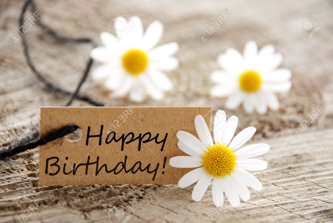 A Natural Looking Banner With Happy Birthday And White Blossoms Stock Photo Picture And Royalty Free Image Image 20108404
