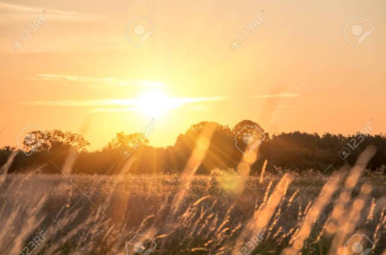 Beautiful Sunrise Early Summer Morning In Good Weather Stock Photo, Picture  And Royalty Free Image. Image 56079271.