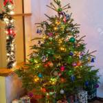 Decorated Christmas Tree And Hidden Gifts Christmas Fir Tree Stock Photo Picture And Royalty Free Image Image 115467562