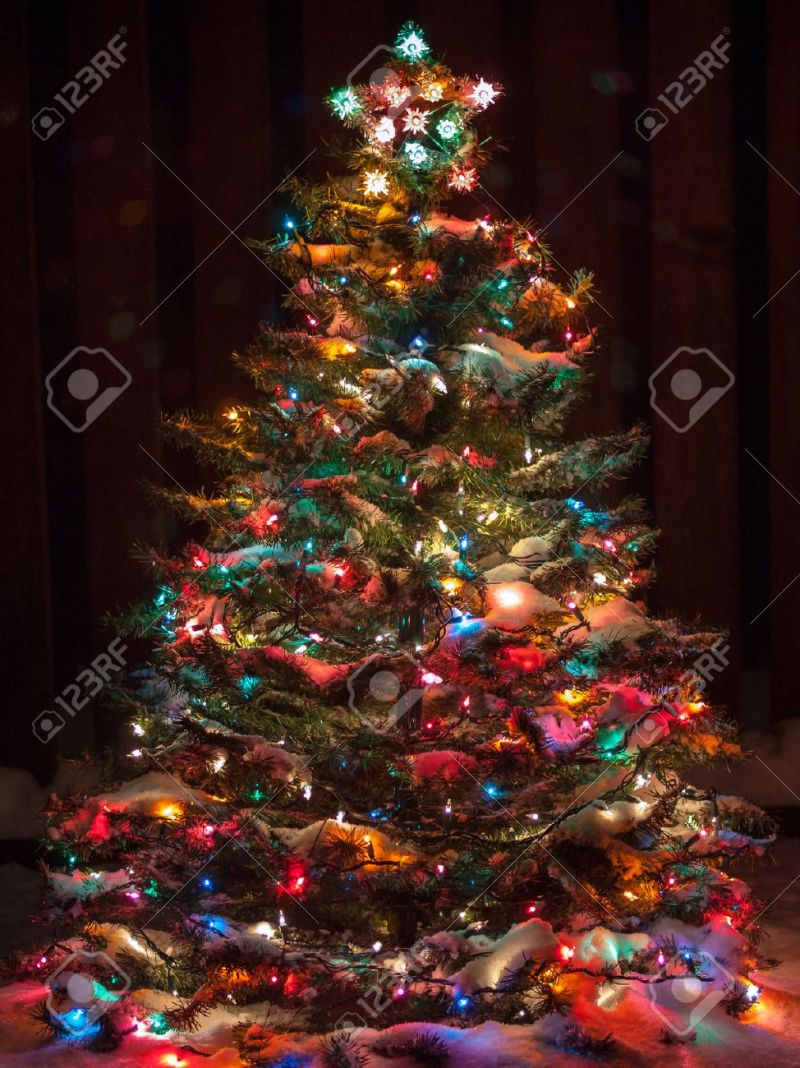 Snow Covered Christmas Tree With Multi Colored Lights Stock Photo 33176811