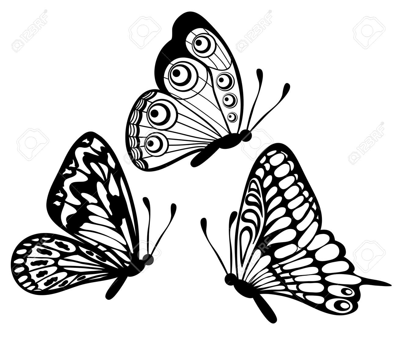 Set Of Beautiful Black And White Butterfly Isolated On White Royalty Free Cliparts Vectors And Stock Illustration Image 18567941