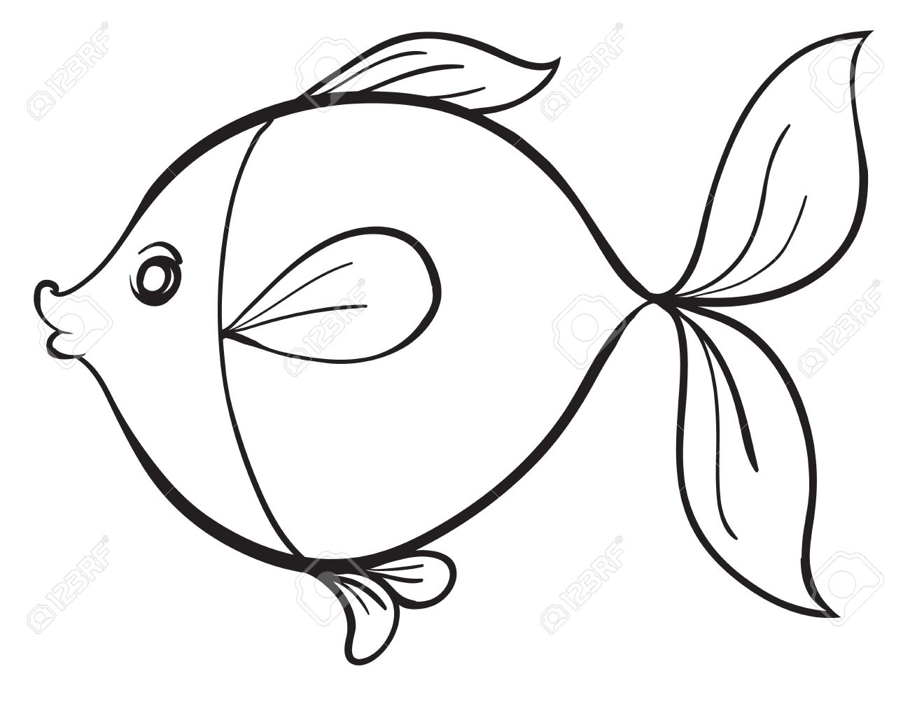 Detailed Illustration Of A Fish Line Art On White Royalty Free Cliparts Vectors And Stock Illustration Image 15667294