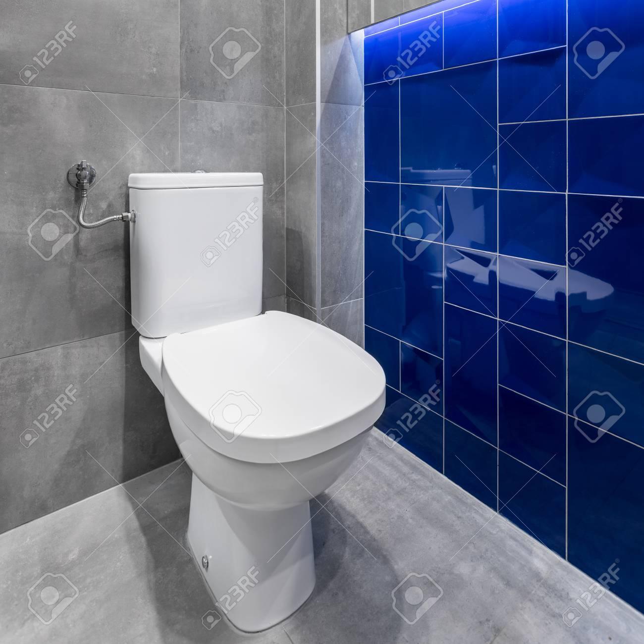 toilette blanche simple dans la salle de bain moderne avec des carreaux elegants en gris et bleu banque d images et photos libres de droits image 66100817