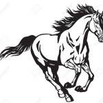 Running Stallion Horse Galloping Wild Pony Mustang Black And Royalty Free Cliparts Vectors And Stock Illustration Image 103958551