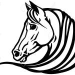 Head Of Arabian Horse In Profile Emblem Tattoo Template Black Royalty Free Cliparts Vectors And Stock Illustration Image 131094853