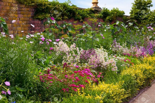 English Herbaceous Garden Border Stock Photo, Picture And Royalty Free  Image. Image 10908754.