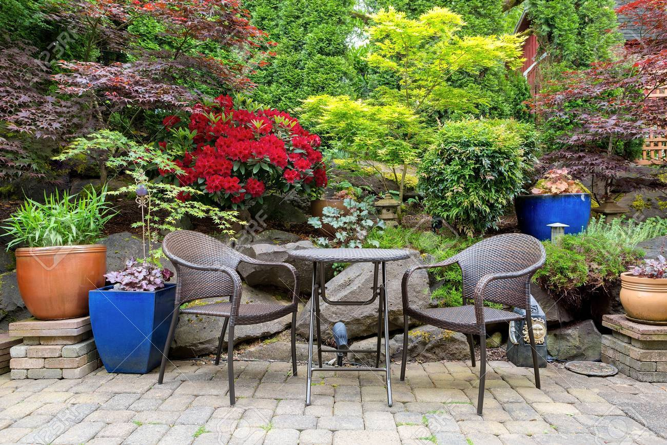 garden backyard with lush plants landscaping and stone paver stock photo picture and royalty free image image 79264439
