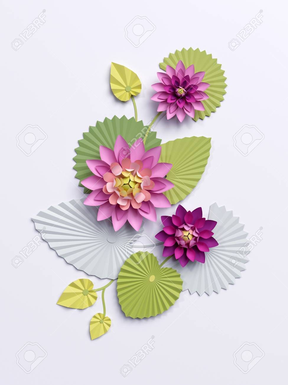 3d Render  Paper Lotus Flowers  Wall Decoration  Pink Water Lily     3d render  paper lotus flowers  wall decoration  pink water lily green  leaves isolated