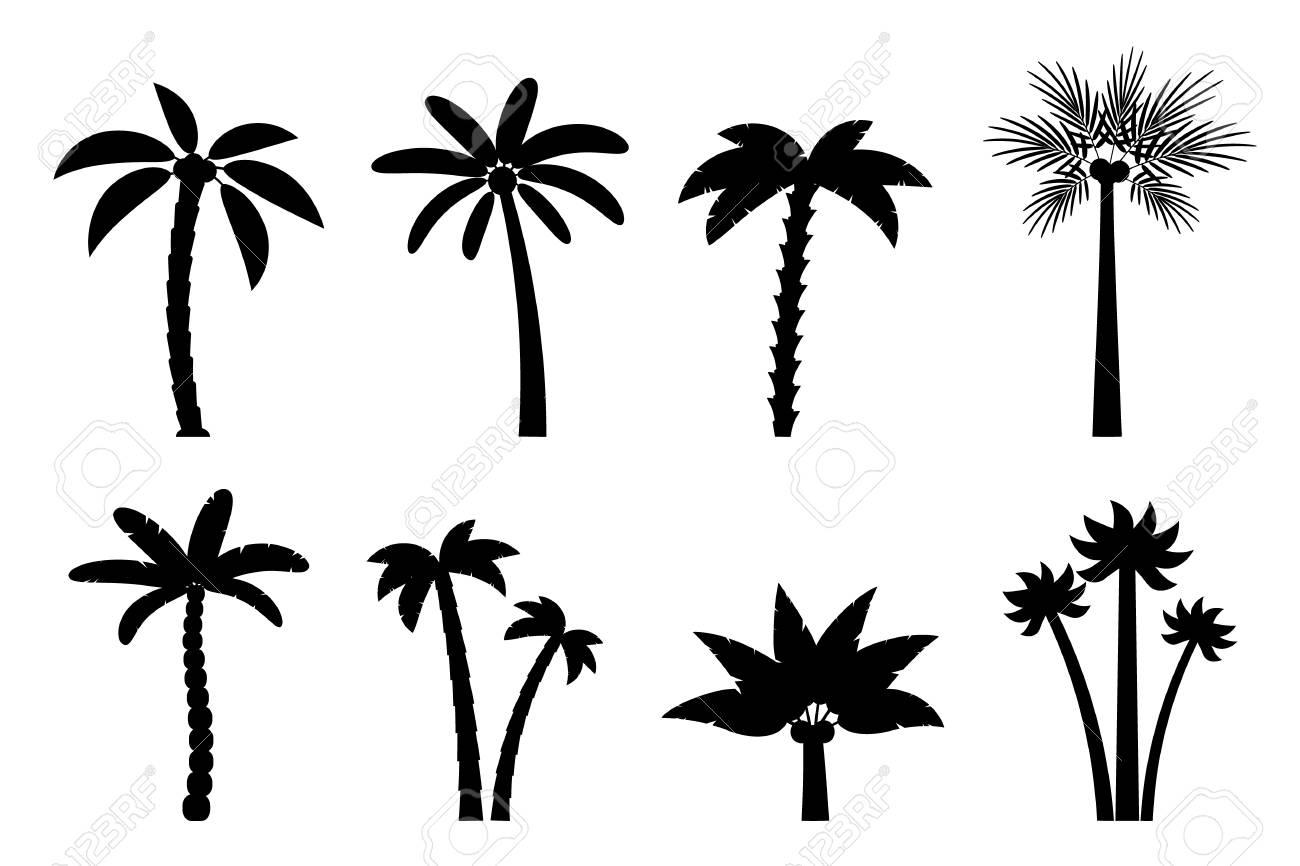 Jeu De Palmiers Simples Vectorielles Silhouette Noire De Plat Dessin Anime De Palmiers Sur Fond Blanc Clip Art Libres De Droits Vecteurs Et Illustration Image 72362496