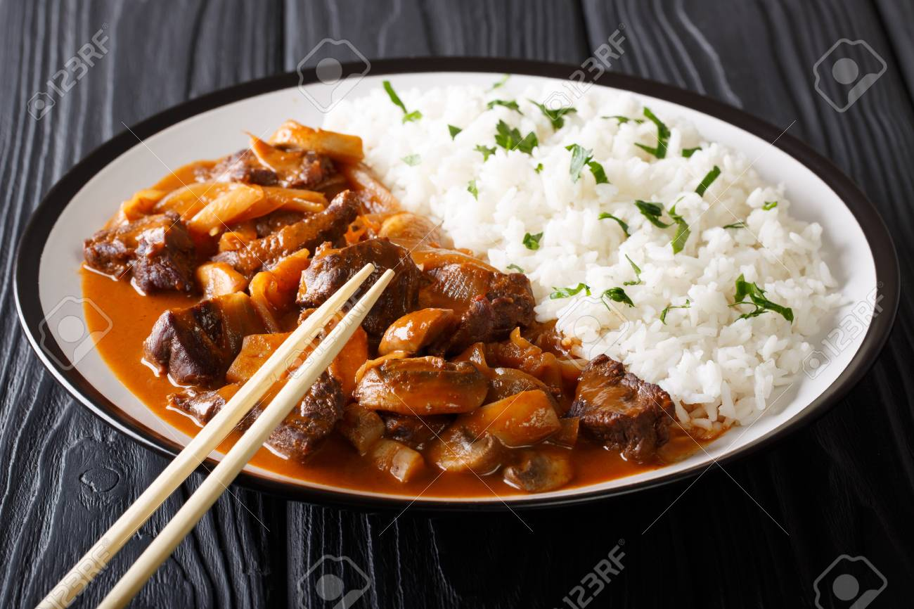 cuisine traditionnelle japonaise boeuf hayashi aux oignons et champignons dans une sauce epicee et gros plan de riz sur une plaque sur une table horizontal banque d images et photos libres de droits
