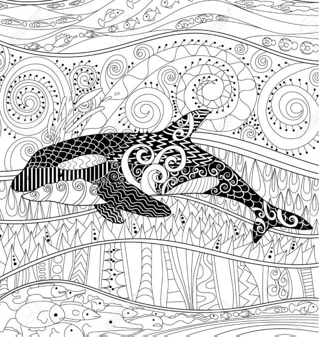 Killer Whale With High Details. Adult Antistress Coloring Page