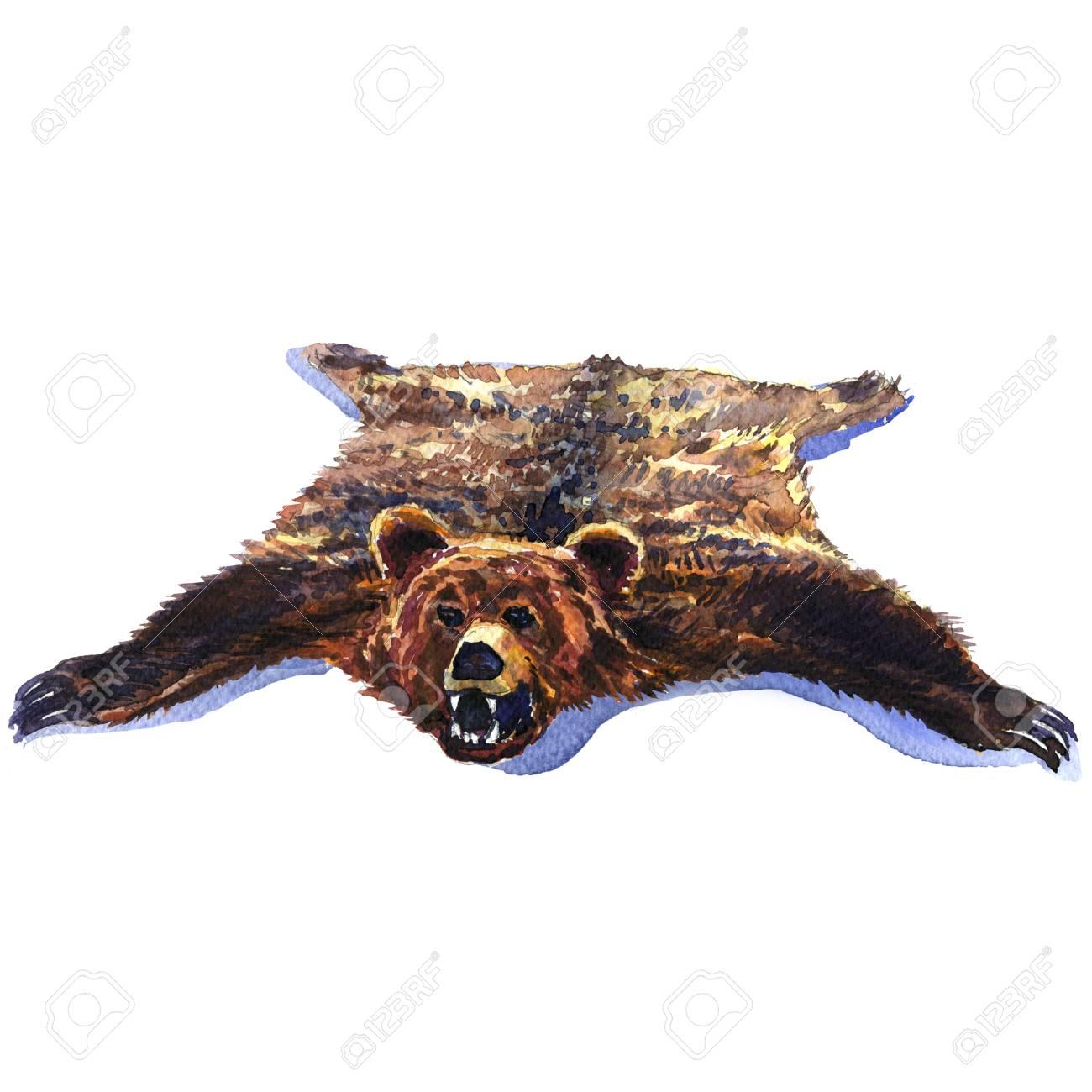 bearskin grande peau d ours brun sauvage isole trophee de chasse illustration aquarelle