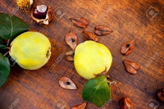 Resultado de imagen de imagenes otoño membrillo