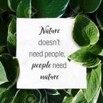 Text Quote Nature Doesnt Need People But People Need Nature Save Stock Photo Picture And Royalty Free Image Image 116011817