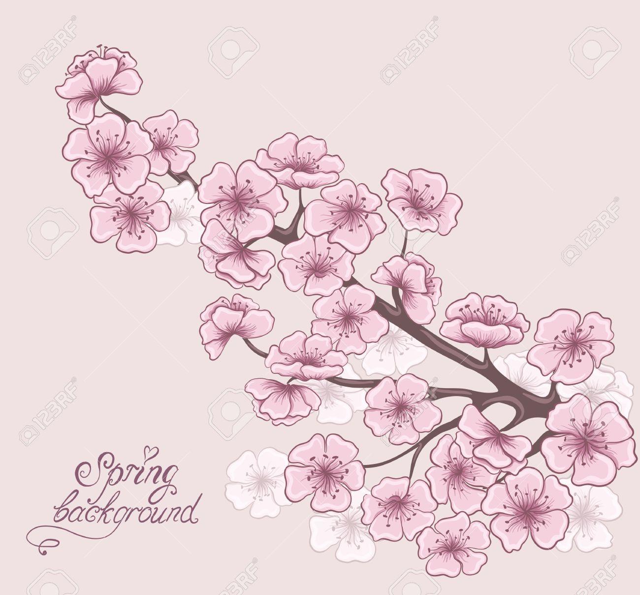 Branche De Cerisier En Fleur Decoratif Printemps Floraux Dessin A La Main Vector Illustration Clip Art Libres De Droits Vecteurs Et Illustration Image 26068148