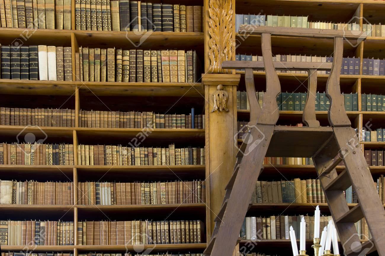 bibliothek regal mit leiter caseconrad com