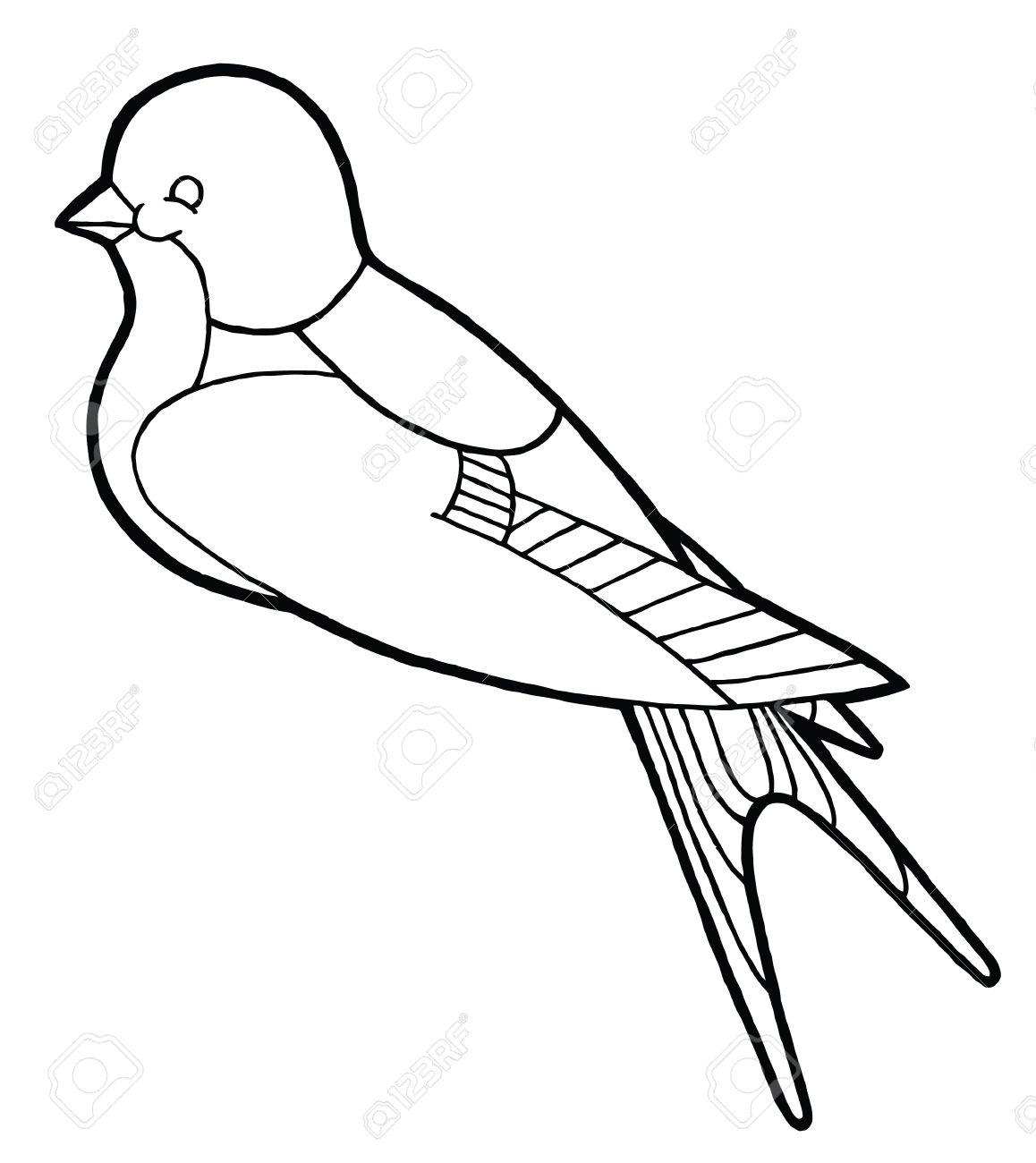 Contour Dessin A La Main Hirondelle Vecteur Noir Et Blanc Pour Livre De Coloriage Clip Art Libres De Droits Vecteurs Et Illustration Image 51172685