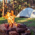 Burning Campfire With Camping Tent In The Background Deep Inside Stock Photo Picture And Royalty Free Image Image 152917399