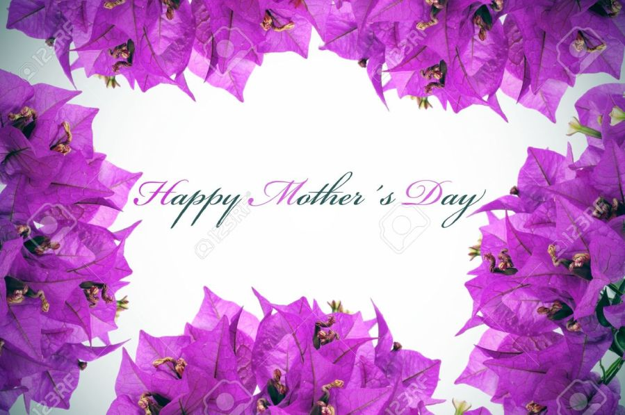 Happy Mothers Day Written On A Background With Purple Flowers Stock     happy mothers day written on a background with purple flowers Stock Photo    13172750
