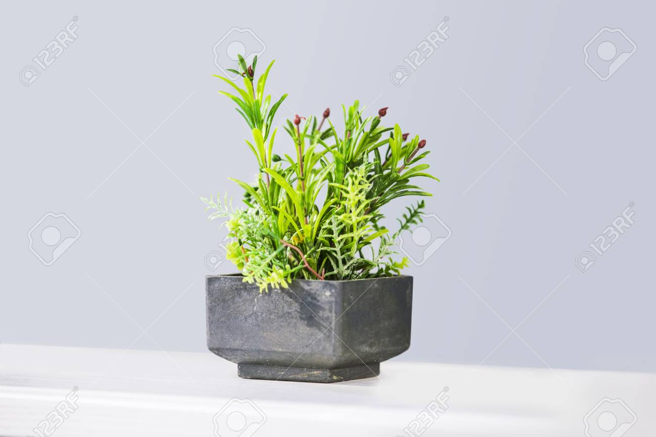 Beautiful Houseplants In Trendy Geometric Pots Fake Decorative Stock Photo Picture And Royalty Free Image Image 92100263