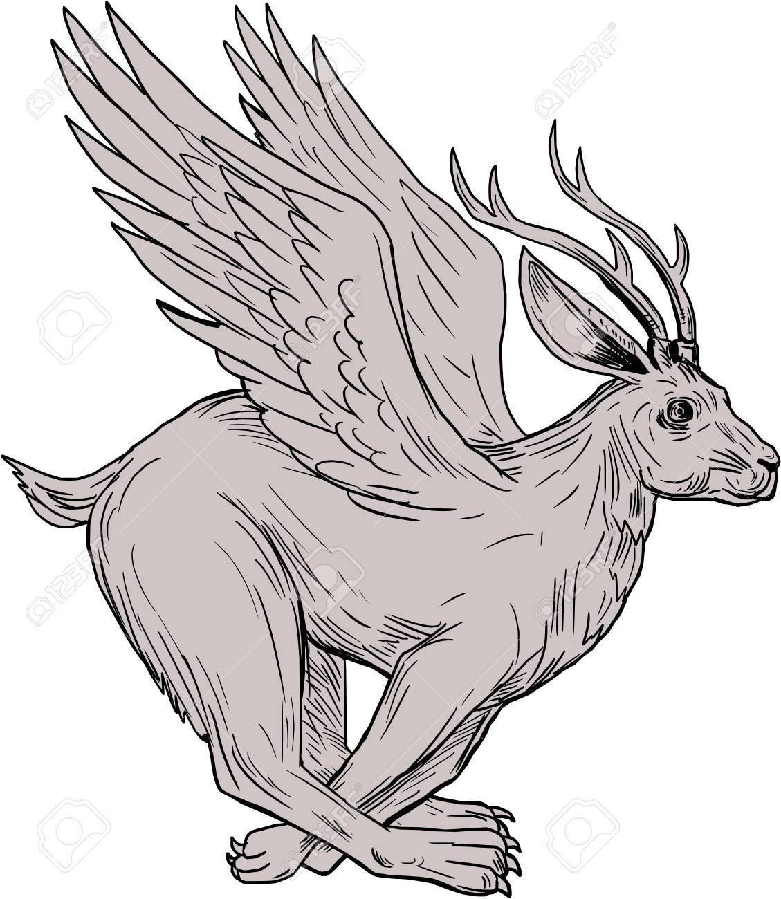 Jackalopes Of Wyoming Myth Or Reality Legends Of America
