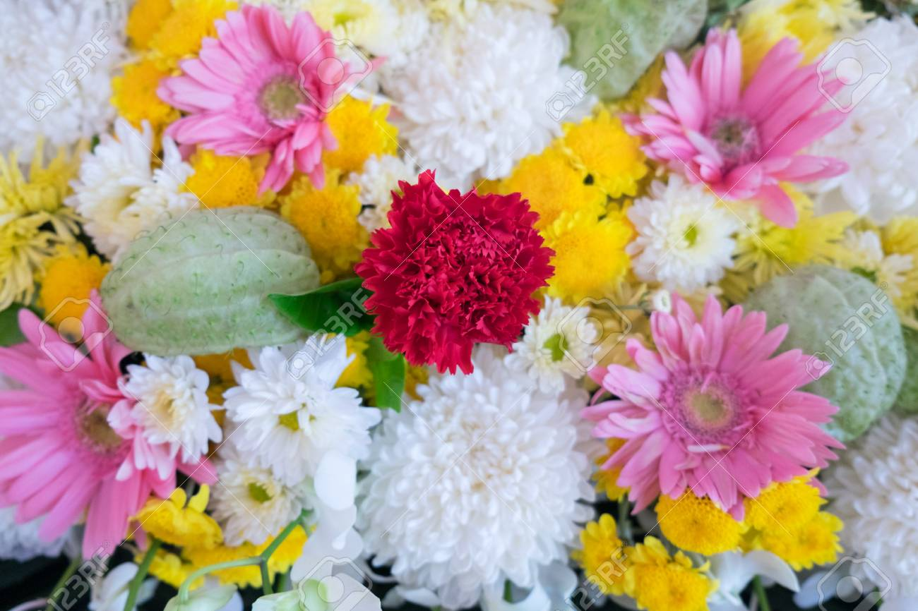 Close Up Colorful Bunch Of Beautiful Flowers Stock Photo Picture And Royalty Free Image Image 50114451