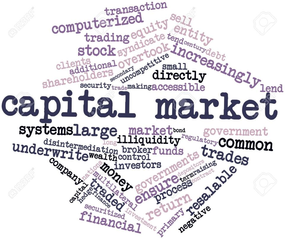 Indian Capital Market : Meaning, Importance, Instruments , Primary and secondary Market.