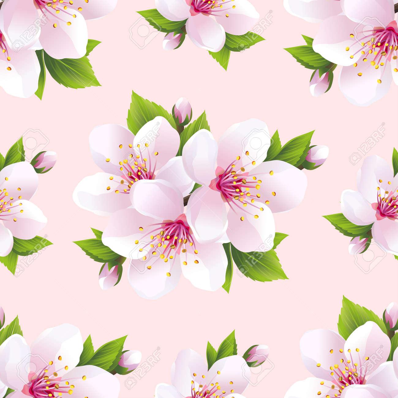 belle lumiere de fond seamless blanc sakura fleur de cerisier japonais floral printemps rose papier peint violet vector illustration