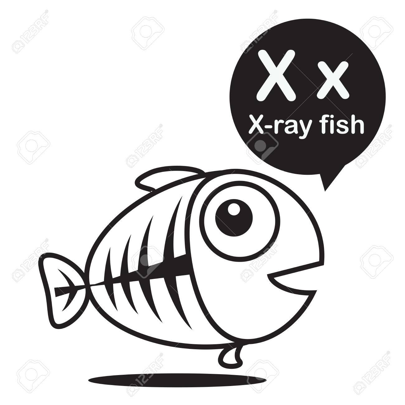 X X Ray Fish Animal Cartoon And Alphabet For Children To Learning