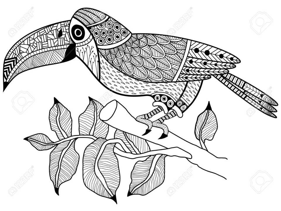 支店や塗り絵大人ラスター図のツリーにオオハシ鳥。大人のための着色抗