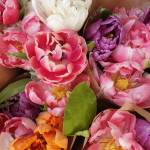 Flower Bouquet Beautiful Rose Tulip Peony Flowers Arrangement Stock Photo Picture And Royalty Free Image Image 147913126