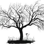 Vector Drawing Of An Old Apple Tree Royalty Free Cliparts Vectors And Stock Illustration Image 10589465