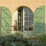 Arched Glass Front Door With Green Shutters Standing Slightly