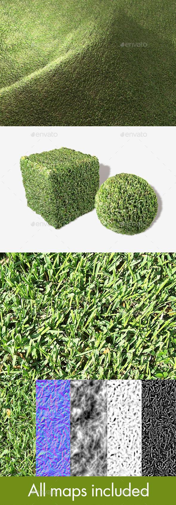 Thick Grass Seamless Texture