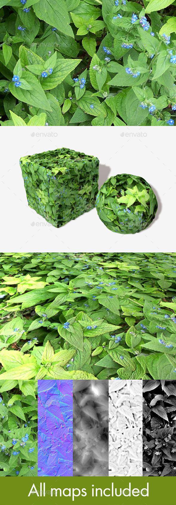 Blue Flowered Weeds Seamless Texture