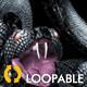 Serpent Tangle - Three Black Snakes